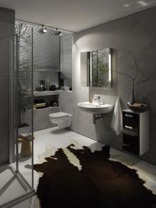 Renova Nr.1 - sprchové vaničky