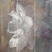 Manteia colour panel A - obkládačka inzerto set 60x60