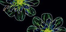 Fluorescent Flower green inserto - obkládačka inzerto 29,7x60