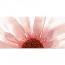 Summer Colours Czerwona Inserto Kwiat - obkládačka inzerto 29,7x60