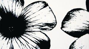 Floral White - obkládačka inzerto 32,7x59,3