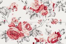 Composizione Rose Lava/Corallo - obkládačka inzerto set 50x74