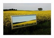 230-672 zrcadlo, obdélník, imitace dřevěného rámu, 70x45 cm