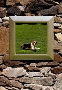 230-658 zrcadlo, čtverec, imitace dřevěného rámu, 49x49 cm