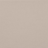 Color Two (RAL 0508010) - dlaždice 20x20 béžová matná, R10 B