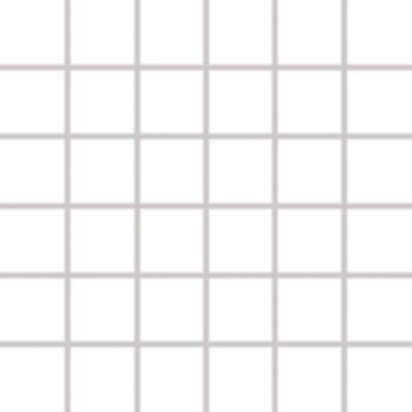Color Two (WHITE) - dlaždice mozaika 5x5 bílá matná, mrazuvzdorná